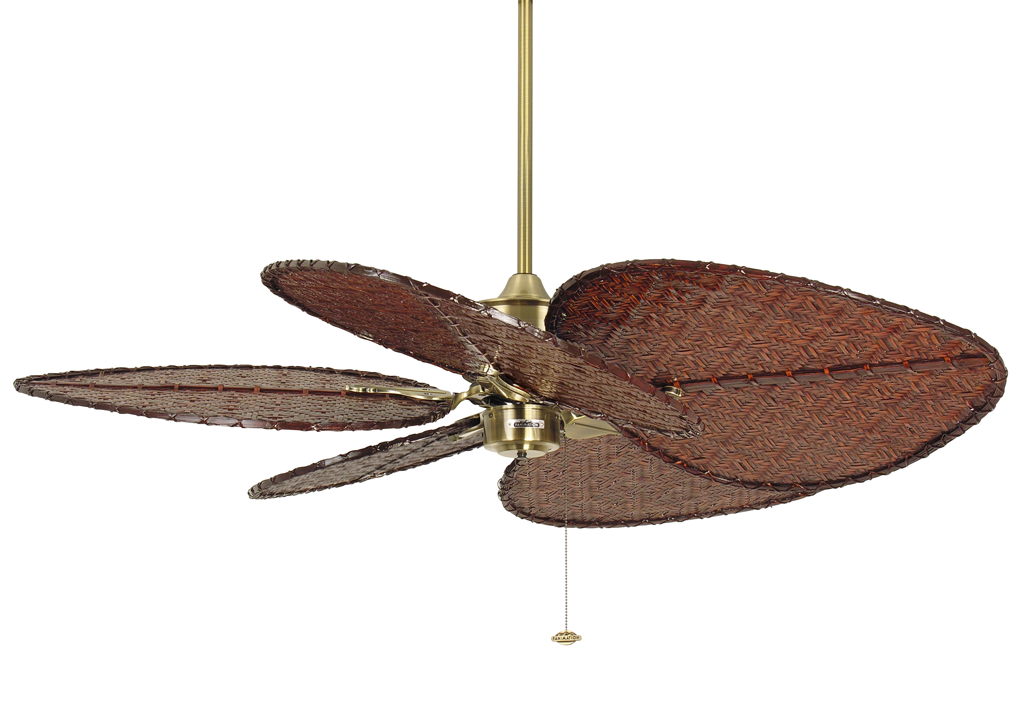 fanimation deckenventilator islander antique. Black Bedroom Furniture Sets. Home Design Ideas