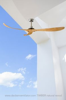 Ceiling fan TIMBER 300