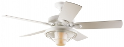 Hunter ceiling fan Outdoor white with light