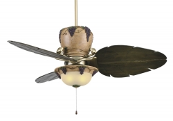 Fanimation ceiling fan CHIANTI