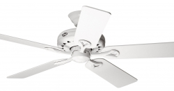 Hunter ceiling fan Savoy 24526